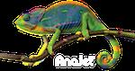 chameleon-dark-shirt-thumbnail